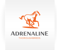 Adrenaline Thoroughbreds